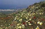 walk onto Profitis Ilias mountain in spring