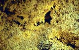 Sulphur crystals in the active Georgios crater on Nea Kameni